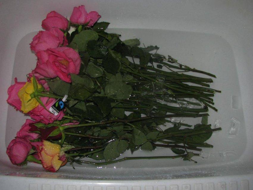 как сохранить цветы в воде