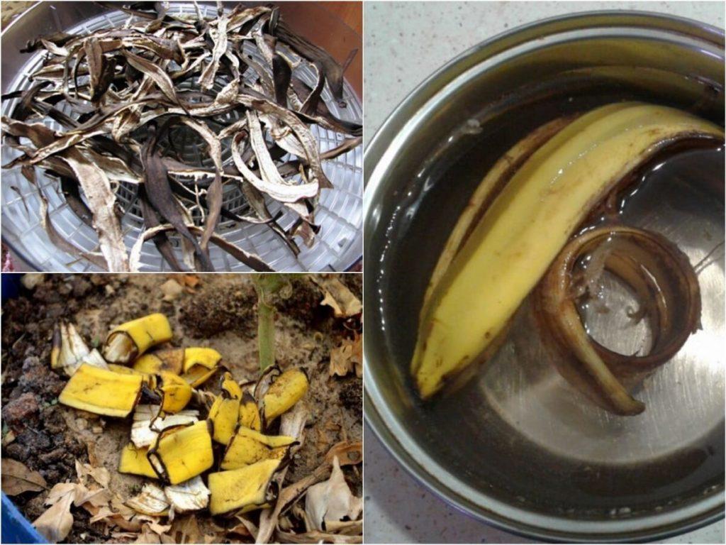 подкормка для цветов из банановой кожуры