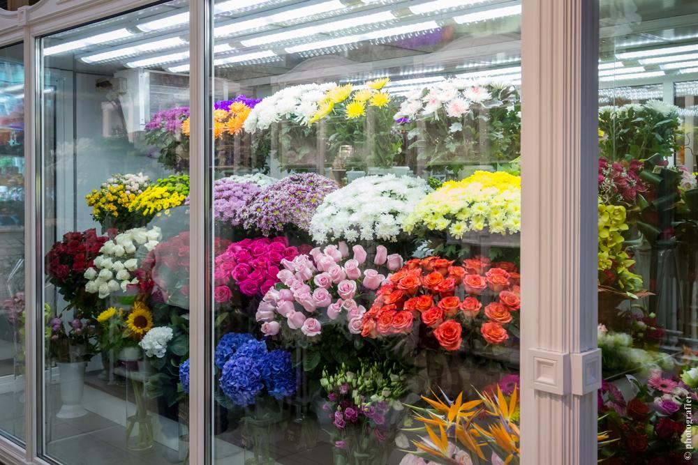 правила хранения растений